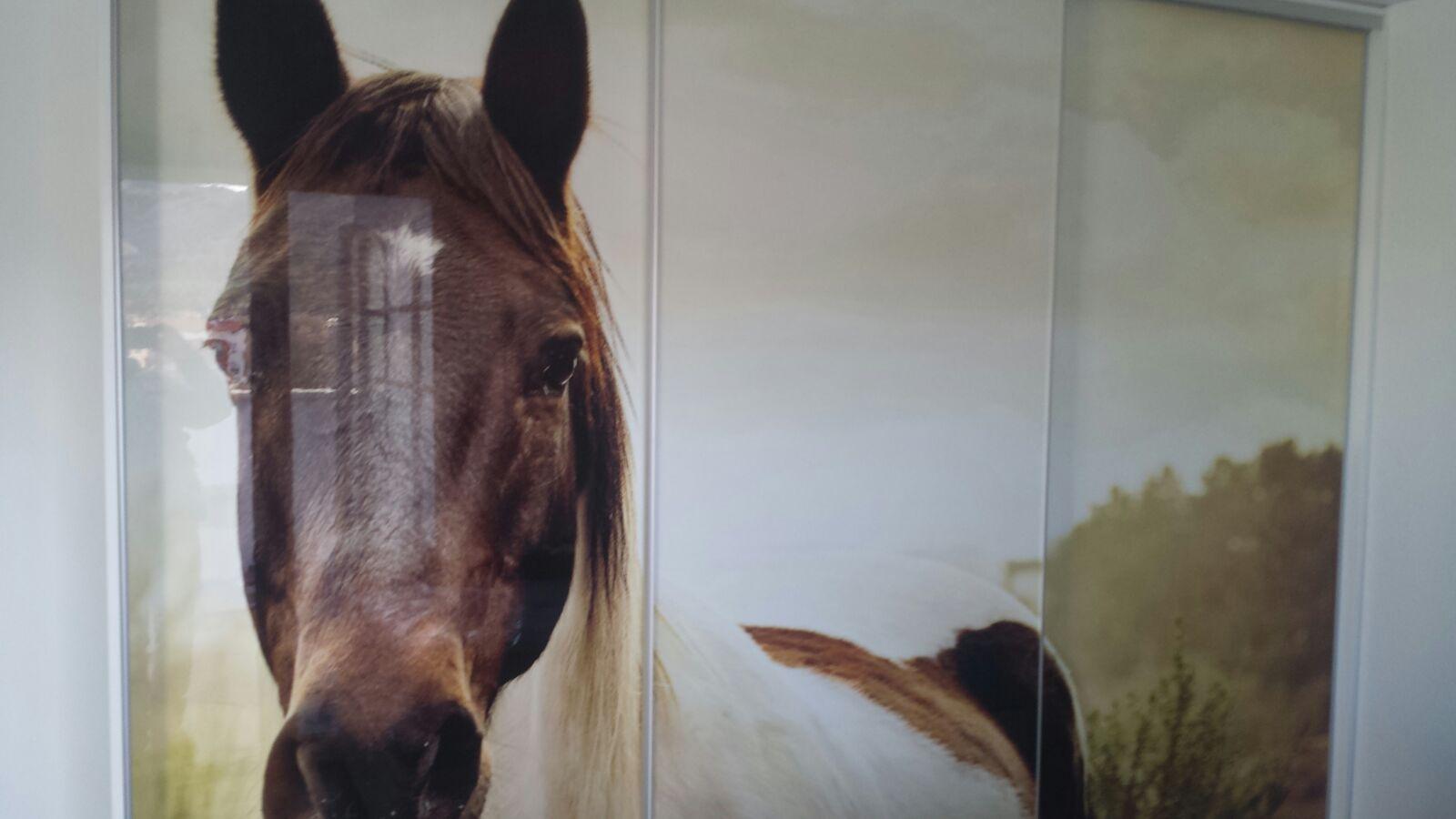 Armario ropero, hojas correderas, interior melamina, y exterior cristal con foto vinilo de caballo.